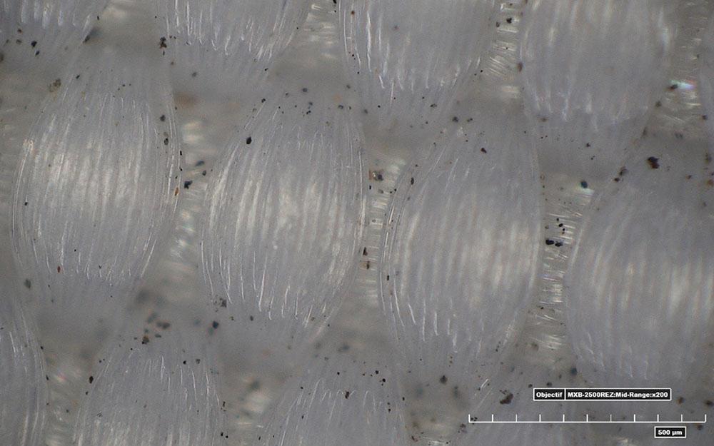 Observation des fibres d'une voile en dacron avant le lavage